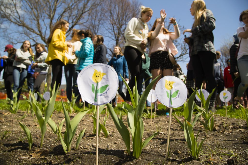 Paper tulip markers are placed in the garden at Lincoln Park in Portland after last year's Yellow Tulip Project walk. The group's founders say they are heartened by the surge in teens who are making suicide prevention a priority.