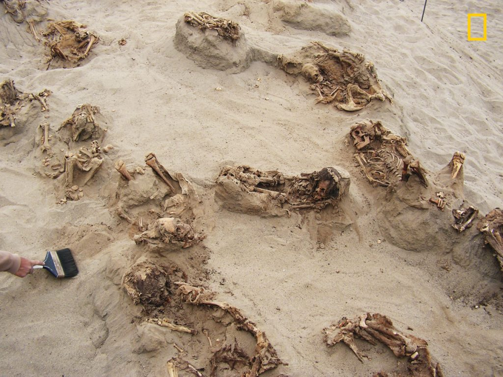 """This April 22, 2011 handout photo provided by National Geographic shows more than a dozen bodies preserved in dry sand for more than 500 years, at the Huanchaquito-Las Llamas site near Trujillo, Peru. Researchers reported that, """"except for three adult burials (two females and one male), all the human skeletal remains were of children, ranging in age from approximately five to fourteen years, with the majority falling in the range of eight to twelve years of age."""""""