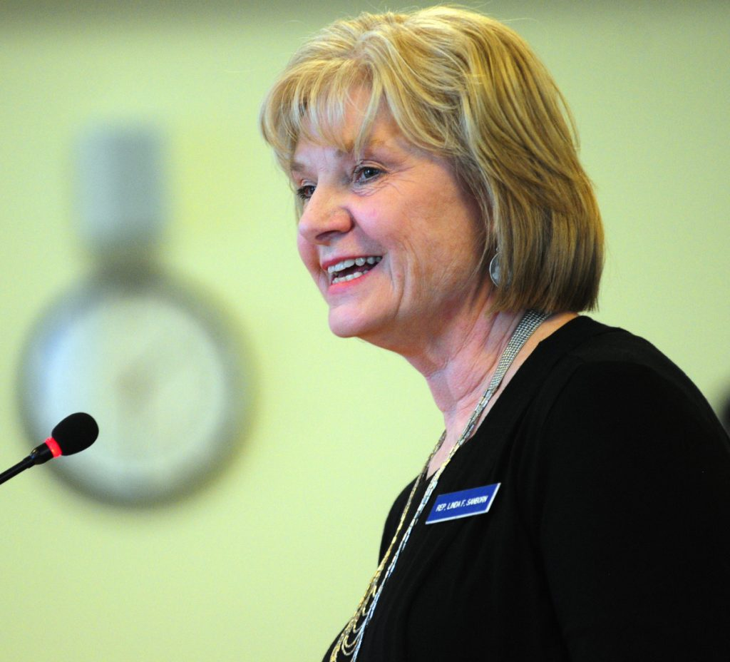 """Dr. Linda Sanborn, a former House member now running for Senate District 30, says: """"I want to be able to run the best campaign I can, but it is going to be difficult."""""""