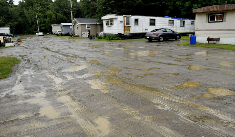 Neighbors said Eddie Mayfield was shot early Thursday morning and left in the mud of the New Road in Newport at the Gilman Trailer Park.