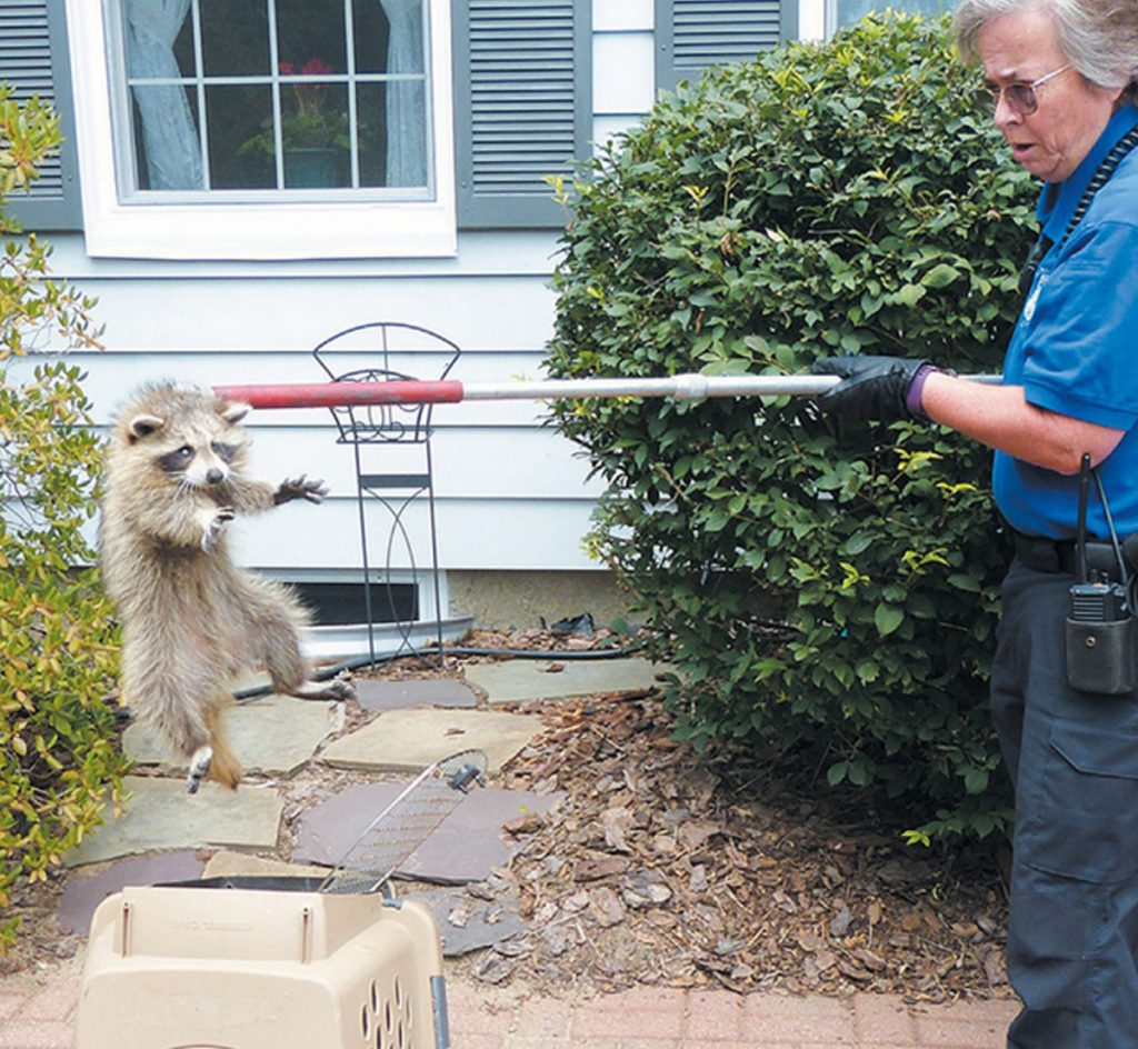 Rabies scare in Brunswick area keeps animal control officers and pet