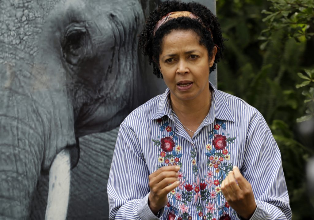 """Paula Kahumbu, Chief Executive Officer of WildlifeDirect speaks to The Associated Press in Nairobi, Kenya Friday, July 13, 2018.  Eight critically endangered black rhinos are dead in Kenya following an attempt to move them from the capital to a national park hundreds of kilometers away, the government said Friday, calling the toll """"unprecedented"""" in more than a decade of such transfers. Losing the rhinos is """"a complete disaster,"""" said Kahumbu. (AP Photo/Khalil Senosi)"""