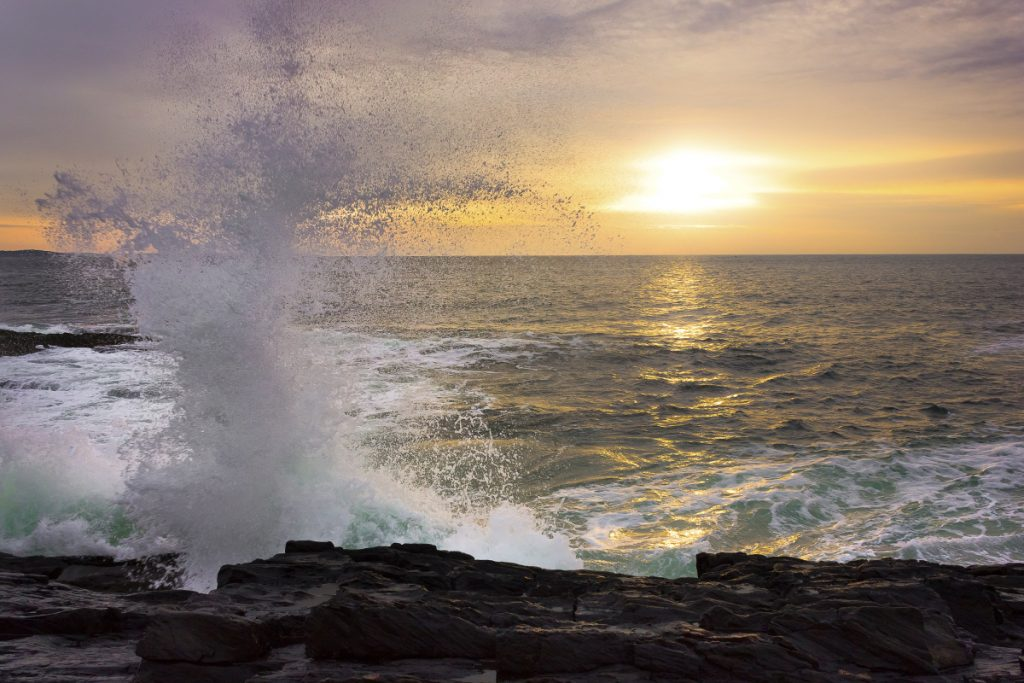 brunswick photographer s shot of shining sea is now a first class