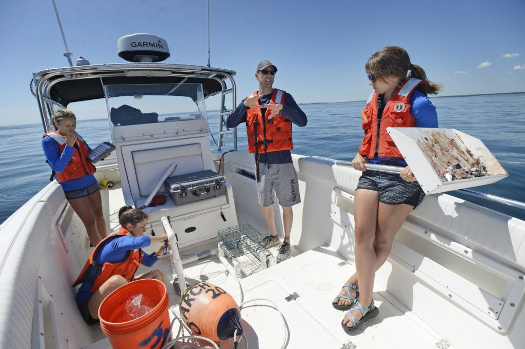Professor James Sulikowski talks with UNE undergraduate students working as research assistants in July, as they prepare to deploy baited underwater cameras for a great white shark study. They chose a spot where a radio receiver detected a tagged great white last fall.