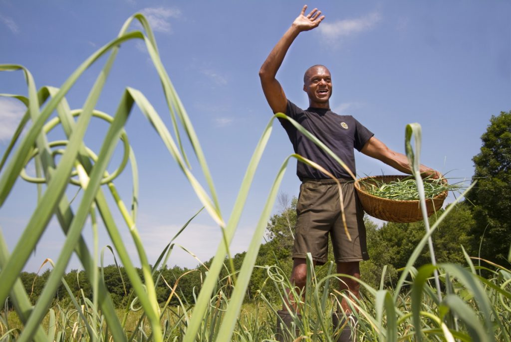 Craig Hickman waves to a neighbor on June 30, 2014, while picking garlic scapes on his Annabessacook Farm in Winthrop.