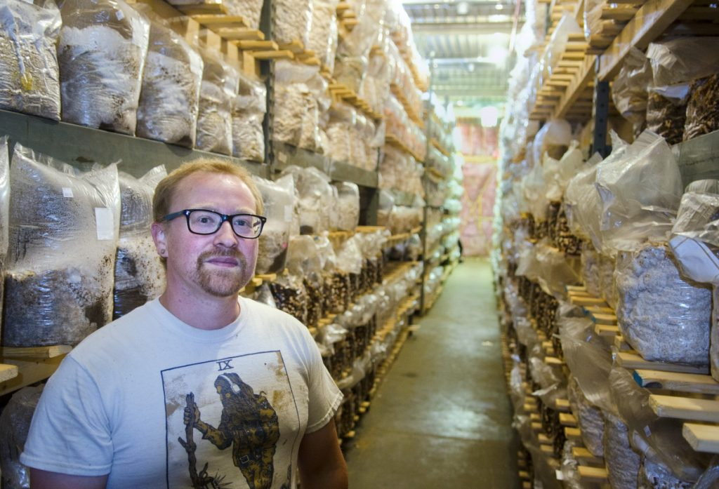 Mark Robinson stands among shelves full of inoculated mushroom substrates Friday at Maine Cap N' Stem Mushroom Co.