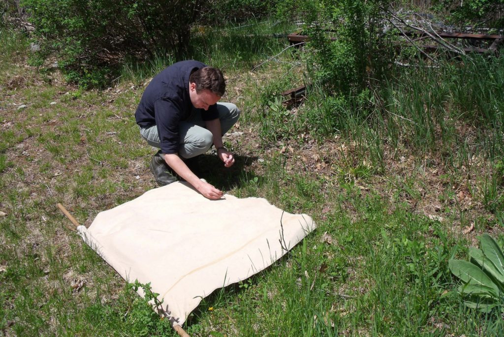 Tick ecologists such as Griffin Dill of the University of Maine Cooperative Extension have tracked the advance of deer ticks across all 16 of Maine's counties. The number of Lyme disease cases in the state reached 1,769 in 2017, a 19 percent increase over the previous year.