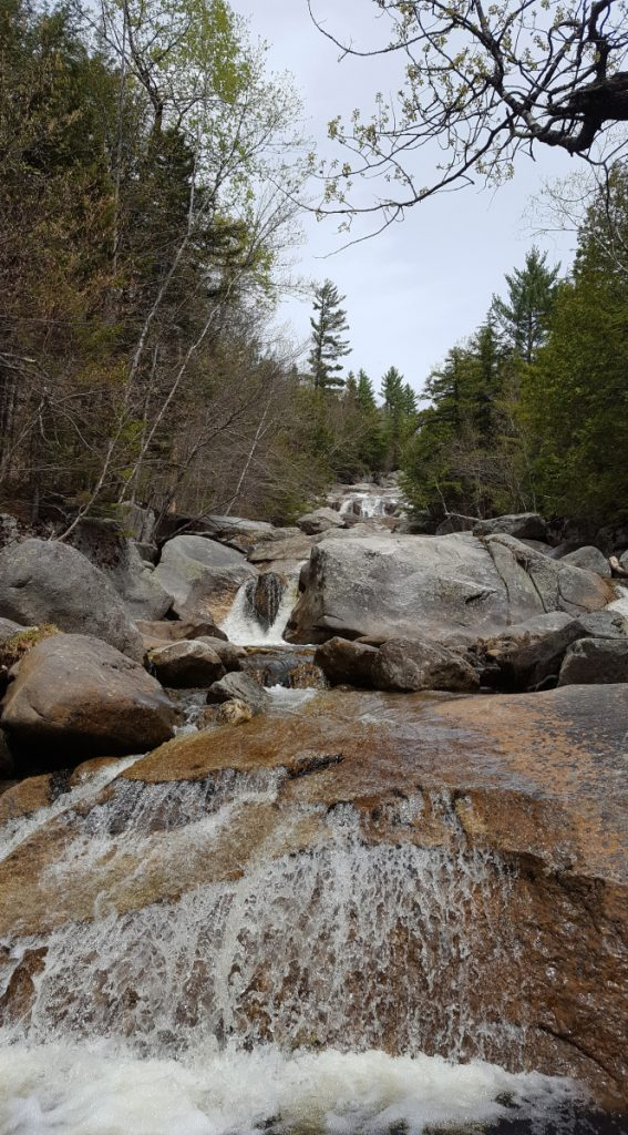 Take a look up the trail at Step Falls Preserve and you are not far away from stunning views, and plenty of spots for a picnic.