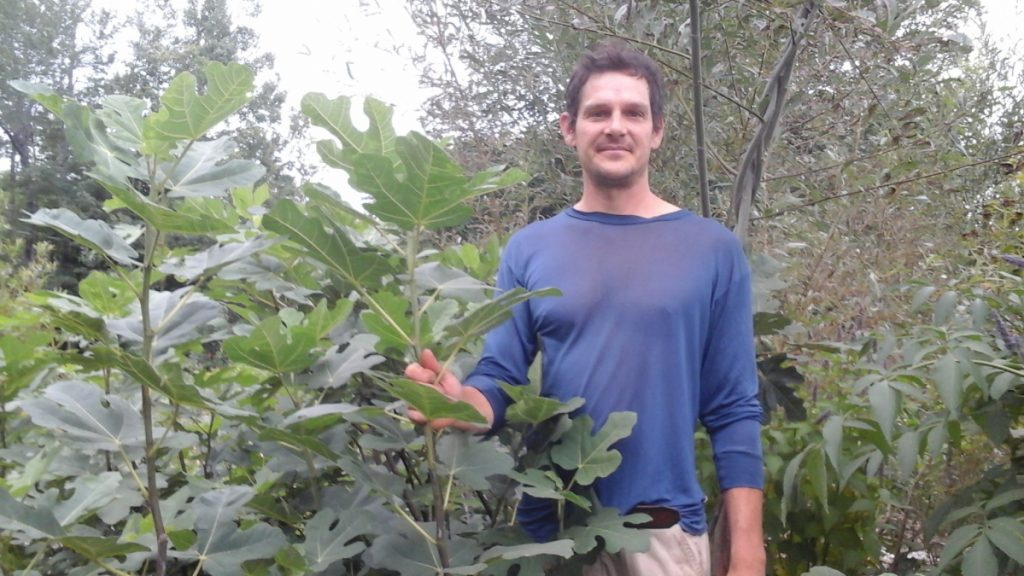 "Jesse Stevens will give the talk ""Figs, Kiwis and Honeyberries"" Saturday at the Common Ground Country Fair."