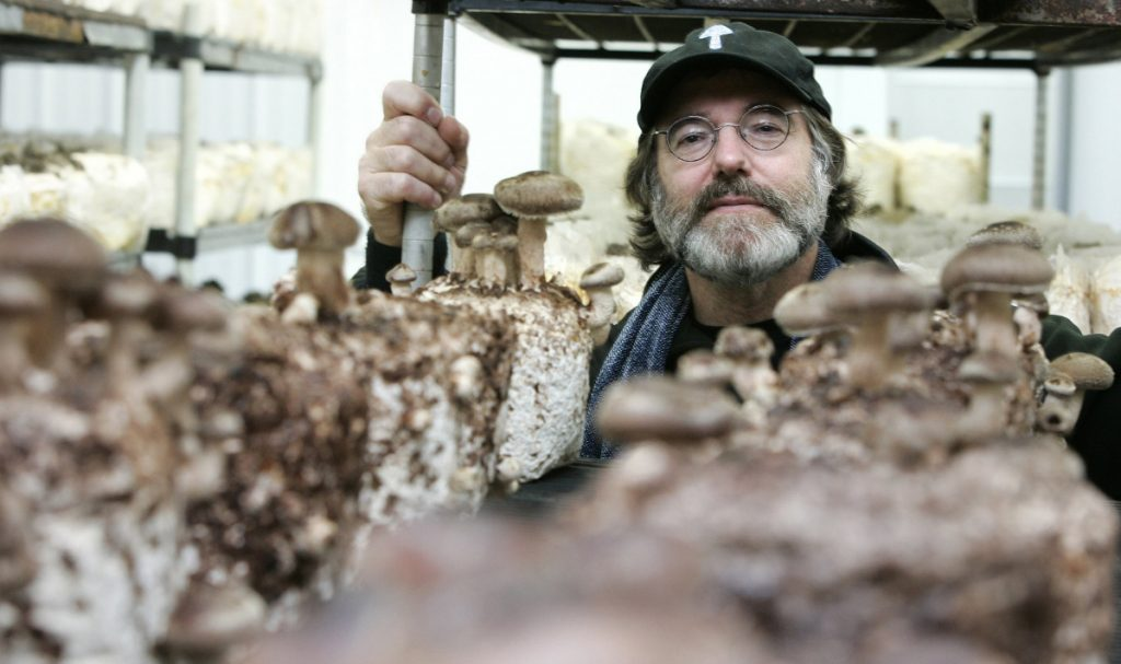 Paul Stamets, a renowned expert on mushrooms, nurtures fungi near his home in Shelton, Wash.