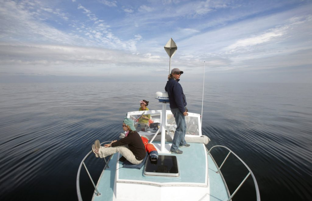 BAY OF FUNDY, ME - SEPTEMBER 8: From left, Brigid McKenna, Monica Zani and Amy Knowlton look and listen for right whales aboard the Nereid with the boat stopped and the motor off in the Grand Manan Basin in the Bay of Fundy on Tuesday, September 8, 2015. The researchers stop their boat for 10 minutes every hour to listen for whale blows because, in the quiet expanse of the Bay of Funday, it can sometimes be easier to hear the blows than to see the whales. The researchers, with the New England Aquarium, look for right whales mothers and calves in August and September and this year have only seen four right whales. In past years, they have seen more than 50. (Photo by Gregory Rec/Staff Photographer)
