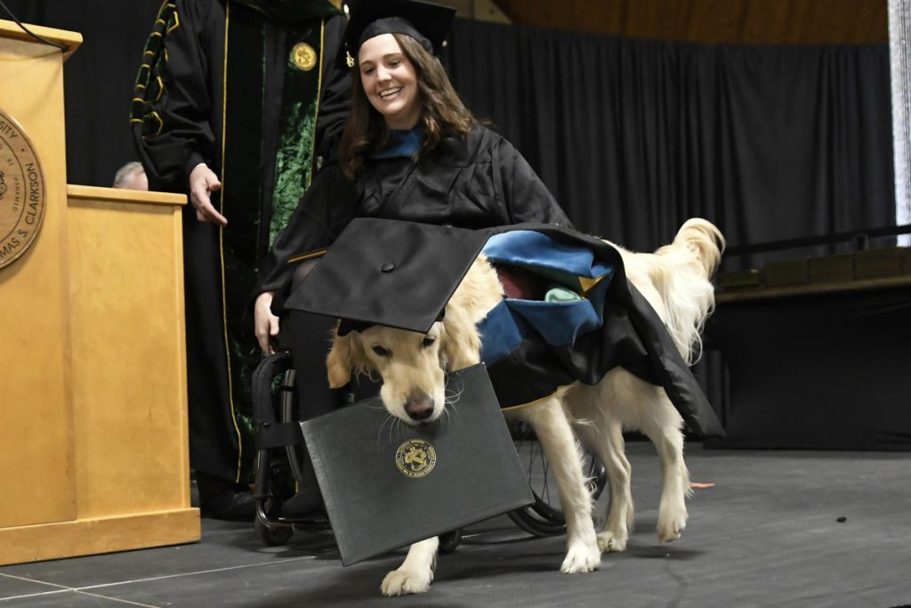 Griffin Hawley, a Golden Retriever service dog, is presented an honorary diploma from Clarkson University.