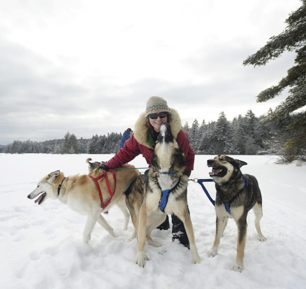 Polly Mahoney of Mahoosuc Guide Service gives her dogs attention during a break while sledding on Umbagog Lake in Errol, N.H., recently. Mahoney has learned that dogs have instincts and distinct personalities that their mushers must get to know to have a successful relationship with them.