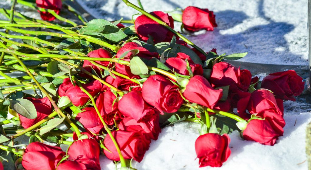 Forty-six red roses rest outside the State House, a symbol of the number of years that have passed since the 1973 Supreme Court ruling lifting abortion bans nationwide.