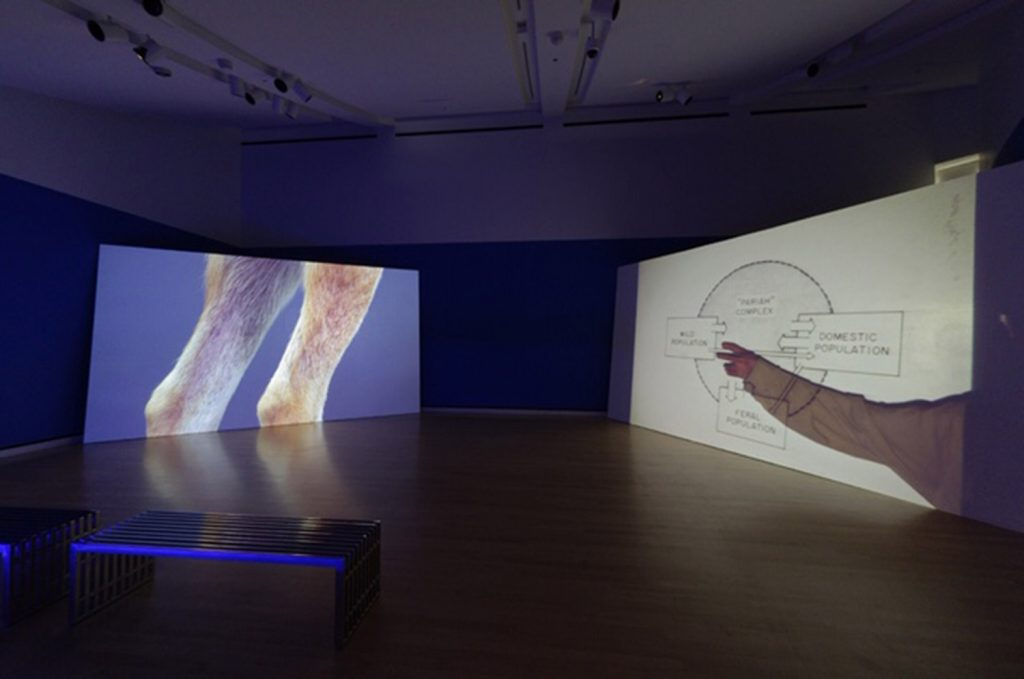 """Installation view of Erin Johnson's solo exhibition """"Heavy Water."""""""