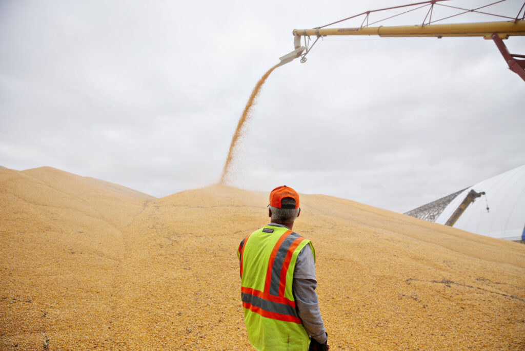 A worker monitors corn being loaded into a storage bunker at the Michlig Grain elevator in Sheffield, Ill., last fall. From trade tensions that have affected a long list of what it produces to a labor shortage that's exacerbated by a crackdown on immigration, the U.S. farm economy has been facing tough hurdles.