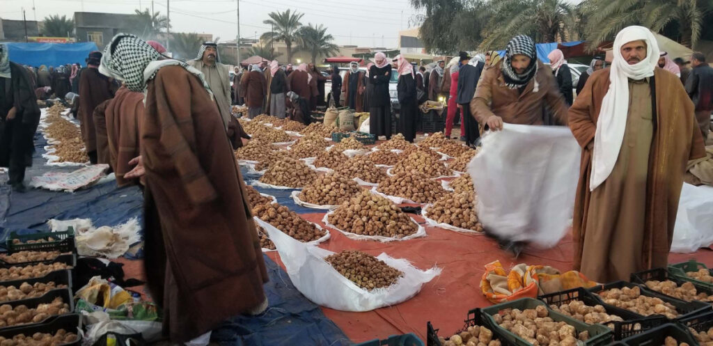 Merchants congregate before daybreak to sell mounds of truffles. (Nabih Bulos/Los Angeles Times/TNS)