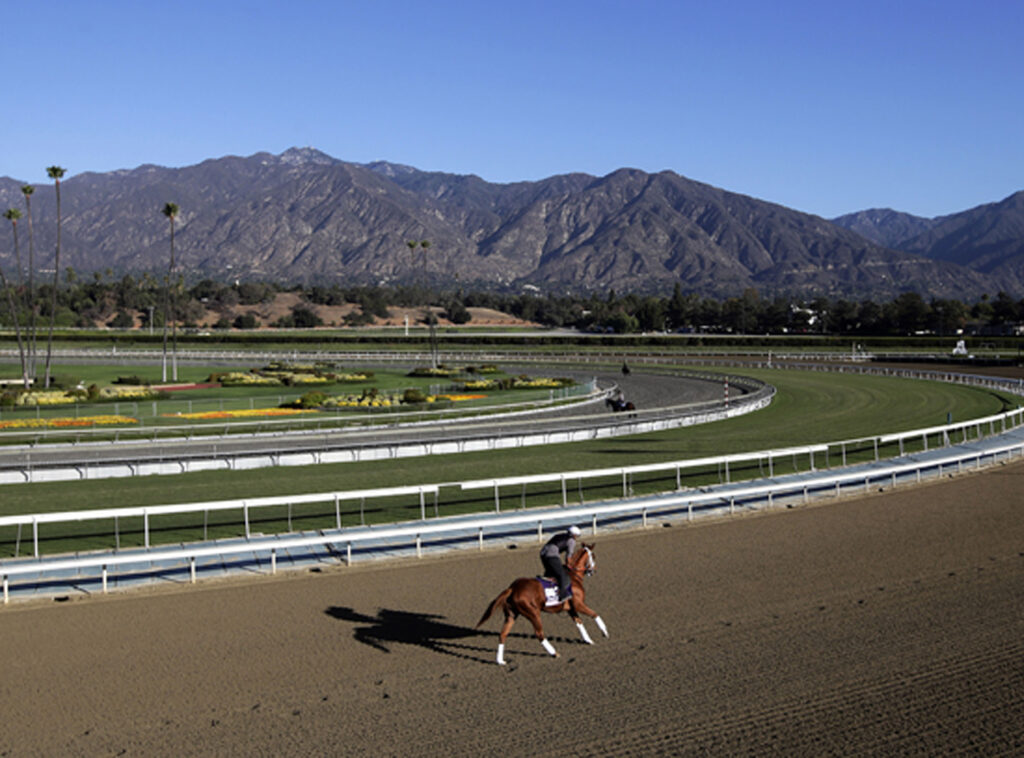 An exercise rider takes a horse for a workout at Santa Anita Park with palm trees and the San Gabriel Mountains as a backdrop in Arcadia, Calif.  in 2013.