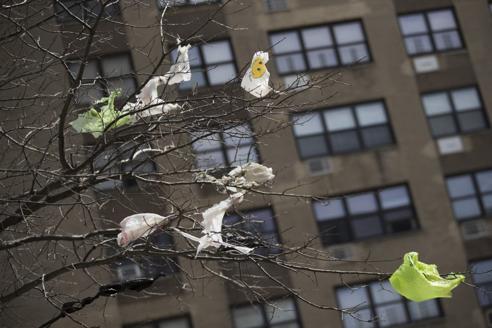 Plastic bags are tangled in the branches of a tree in New York City's East Village neighborhood. Lawmakers are working through the final weekend of the month to pass a budget that would include  a state wide ban on single use plastic bags.