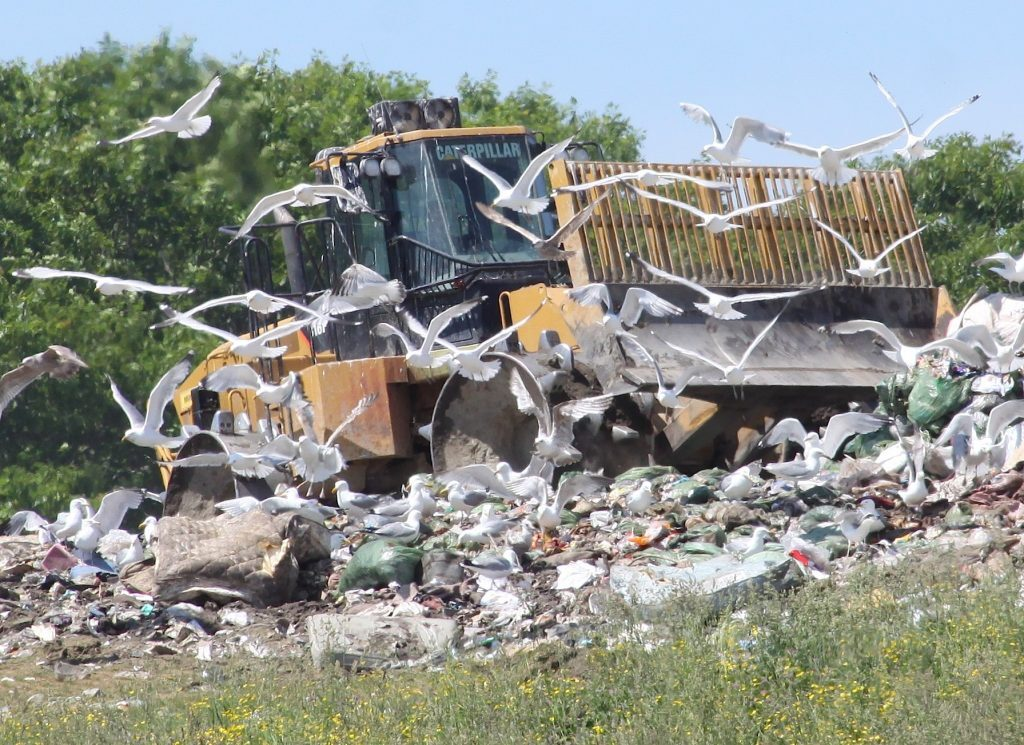 As Costs Skyrocket And Recycling Market Crumbles, Midcoast