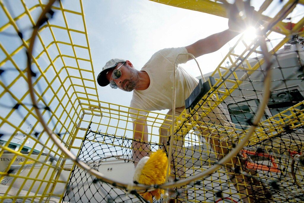 State floats whale protection plan that would affect a fraction of state's lobster fleet | The Times Record