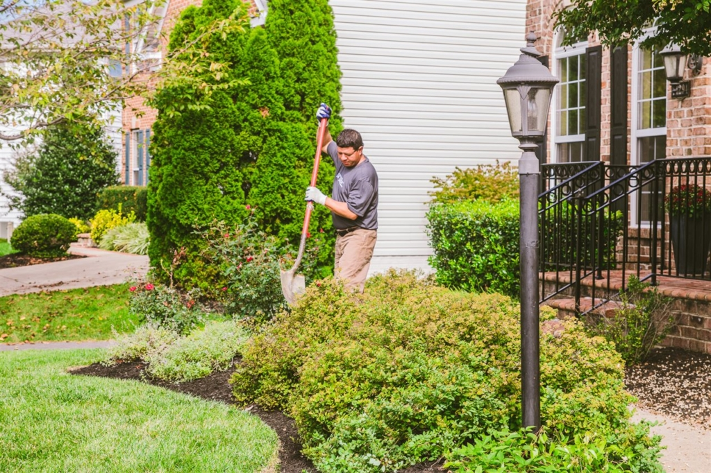 When you plant more trees and shrubs in your yard, you are sequestering carbon, producing oxygen and cleaning and filtering the air in your immediate environment.