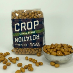 """A bag of brown, marfax beans in a clear package labeled """"crop rotation bean from maine grains."""""""